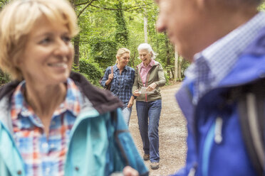 Group of friends on hiking trail, looking at map - CUF31656