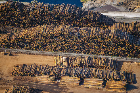Aerial view of stacks of logged tree trunks in timber yard - ISF09856