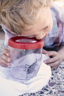 Young boy looking at bug through magnified container - ISF09979