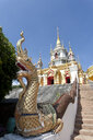 Thailand, Chiang Mai province, Doi Inthanon, Dragon sculpture on stairs to temple of Wat NamTok Mae Klang - ZCF00629