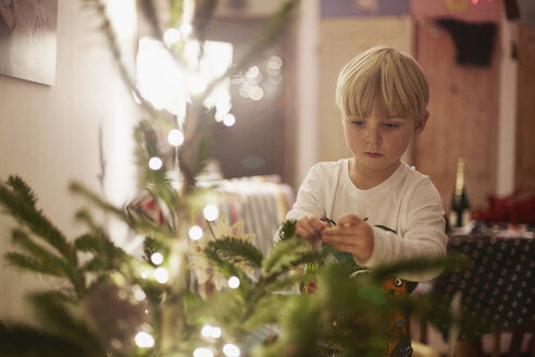 Young boy decorating christmas tree - CUF32439