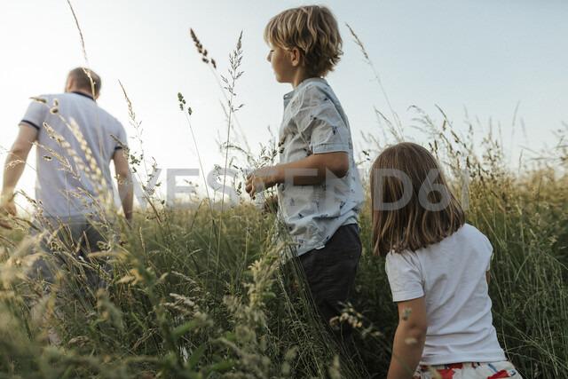 Siblings following their father in nture - KMKF00361