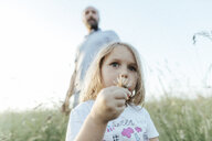Portrait of little girl with flower on a meadow and father watching her from the background - KMKF00367
