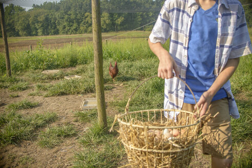 Cropped shot of boy carrying basket of eggs in field - ISF11508