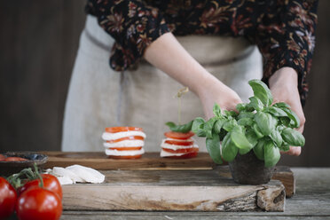 Woman preparing Caprese Salad, partial view - ALBF00526