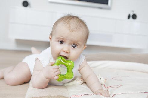 Baby biting teething ring - CUF33533