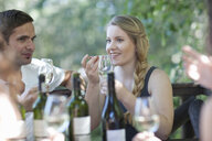 Young friends tasting and smelling wine at vineyard bar - CUF33602