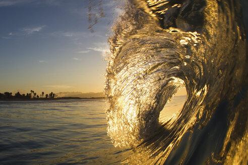 Barrelling wave, Hawaii, USA - ISF14215