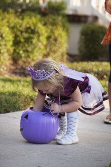Toddler reaching into Jack O' Lantern bucket - ISF14341