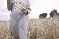 Woman on a field with bunch of picked chamomiles, partial view - KMKF00391