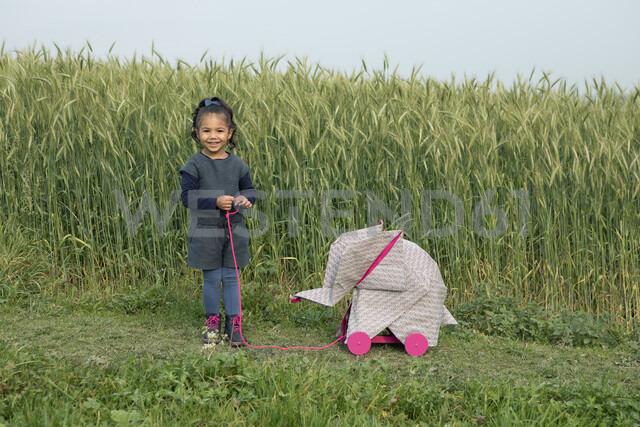 Little girl with origami elephant at field - PSTF00122