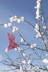 Origami bird on twigs with snow - PSTF00128