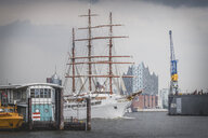 Germany, Hamburg, tall ship Sea Cloud 2 and Elbphilharmonie in background - KEB00845