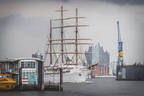 Germany, Hamburg, tall ship Sea Cloud 2 and Elbphilharmonie in background - KEB00845