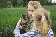 Two sisters in field with domestic cat - CUF34754