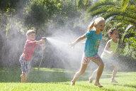 Three children in garden chasing each other with water sprinkler - CUF35282