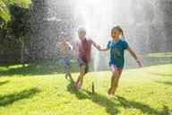 Three children in garden running through water sprinkler - CUF35285