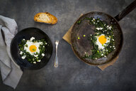 Green Shakshouka with baby spinat, chard, spring onions and basil - LVF07155