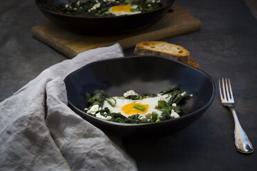 Bowl of green Shakshouka with baby spinat, chard, spring onions and basil - LVF07158