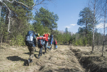 Rear view of young hikers with backpacks on forest track - CUF36226