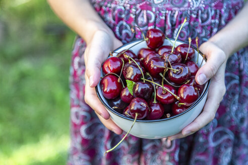 Girl's hands holding bowl of cherries, close-up - SARF03816