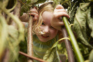 Close up portrait of girl hiding in bushes - CUF36921