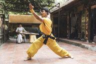 Vietnam, Hanoi, young man exercising Kung Fu - WPEF00528