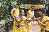 Vietnam, Hanoi, men exercising kung fu - WPEF00531
