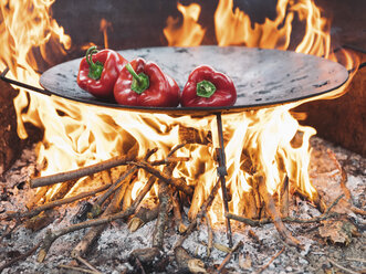 Red bell peppers on barbecue tray - NOF00039