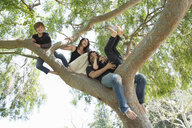 Portrait of family with two boys climbing on park tree - ISF14614