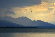 Germany, Bavaria, Chiemgau Alps, Chieming at Chiemsee, dark clouds over Lake Chiemsee - LBF01990