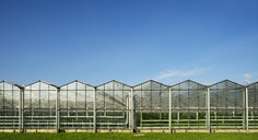 Panoramic view of row of greenhouses and blue sky - CUF38450