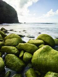 USA, Hawaii, Kauai, Na Pali Coast, overgrown stones at the beach - CVF00926