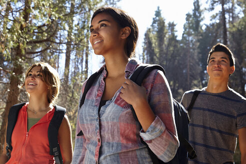 Three young adult friends hiking in forest, Los Angeles, California, USA - ISF15876