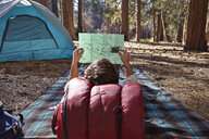 Rear view of young male camper lying on blanket looking at map in forest, Los Angeles, California, USA - ISF15885