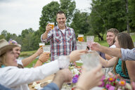 Family and friends making a toast at outdoor meal - ISF16002