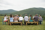 Family and friends making a toast at outdoor meal - ISF16014
