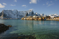 Cod fishing village, Lofoten, Norway - ISF16327