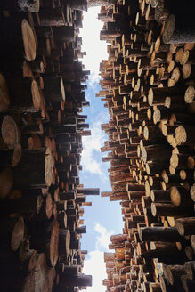 Low angle view of stacked timber in timber yard - ISF16402