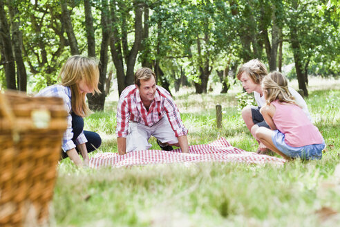 Family having picnic in park - CUF39231
