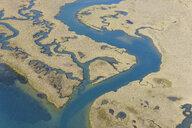 Spain, Andalusia, Punta Umbria, Marismas del Odiel, aerial view - RUEF01883