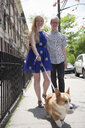 Young couple taking corgi dog for a walk along street - ISF16747