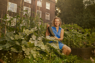 Young woman harvesting marrows on council estate allotment - CUF39964