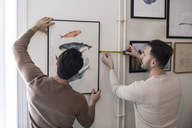 Rear view of gay couple hanging painting on wall at home - MASF08199
