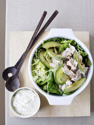 Bowl of chicken and avocado salad - CUF40229