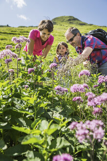 Parents and daughter discovering plants, Tyrol, Austria - CUF40427