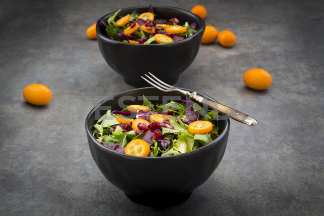Bowl of mixed green salad with red cabbage, kumquat and pomegranate seeds - LVF07261