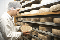 Worker examining cheese round at farm factory - CUF41652