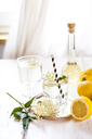 Glass of homemade elder lemonade with slice of lemon - SBDF03663