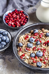 Bowl of muesli with blueberries and pomegranate seed - SARF03842
